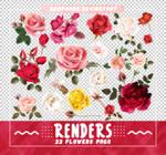 Renders 511 // Flowers Pngs
