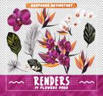 Renders 514 // Flowers Pngs