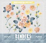 RENDERS // Flowers Pngs