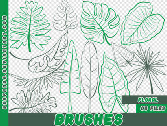 BRUSHES | TROPICAL PLANTS