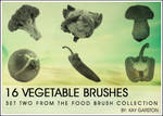 FOOD BRUSH COLLECTION - Veg