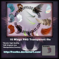 16 Wings PNG file transparent by FrostBo
