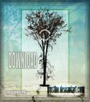 Tree 02 Stock