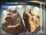 Rock Stock 02