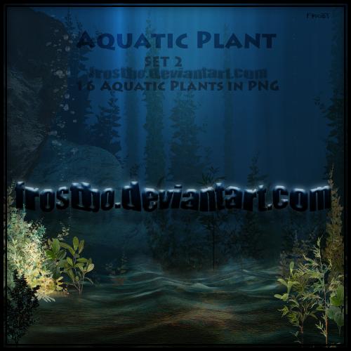 16 Aquatic Plants PNG Set 2