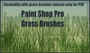 Paint Shop Pro Grass Brushes