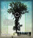 Tree Stock 51