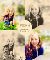 Psd_14 by psdsoverflowers