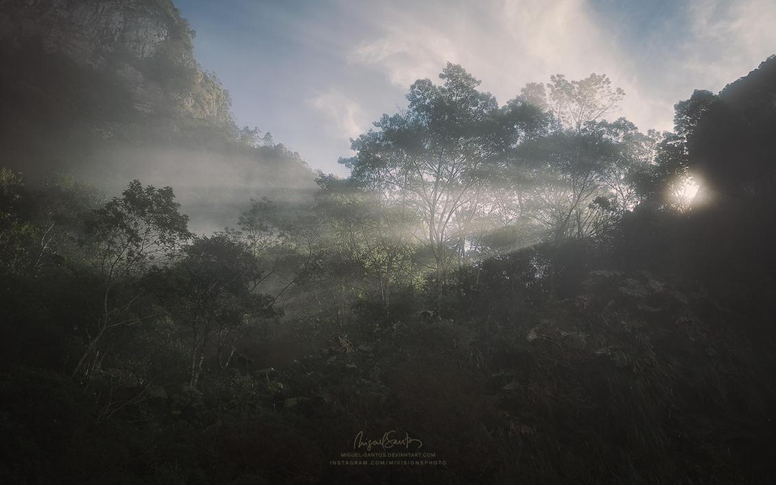 Paradise Lost by Miguel-Santos