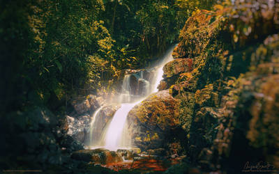 Stream of Light - Earth Day Wallpaper by Miguel-Santos