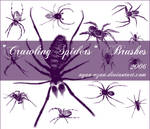 Crawling Spiders Brushes