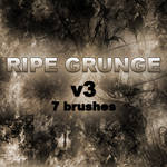 RIPE GRUNGE v3 - 7 brushes