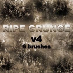 RIPE GRUNGE v4 - 6 brushes