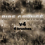 RIPE GRUNGE v4 - 6 brushes