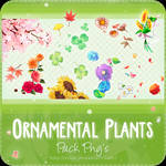 Pack Png's #3 Ornamental Plants