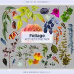 Foliage Aesthetic PNG Pack