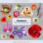 Flowers Aesthetic PNG Pack