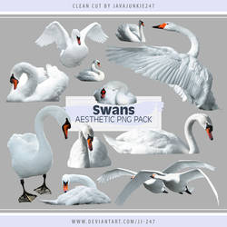 Swans Aesthetic PNG Pack