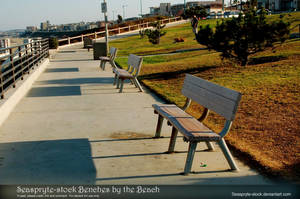 Seaspryte-stock Benches by the Beach