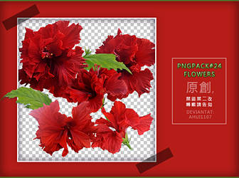 PngPack #24 flowers by ahui1107 by ahui1107
