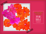 PngPack #25 flowers by ahui1107
