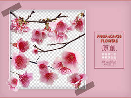 PngPack #26 flowers by ahui1107