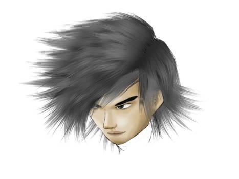 Sphu's Hair brush