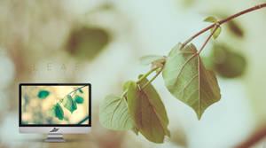 Leaf by i5yal