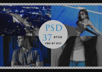 Psd 37  Stud By Diti