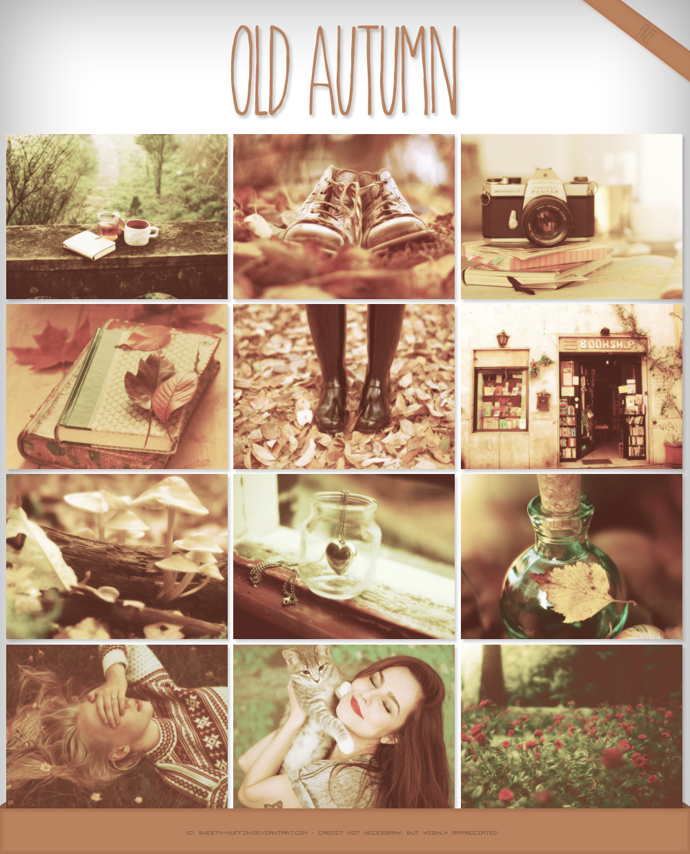 Old Autumn Action by Sweety Muffin