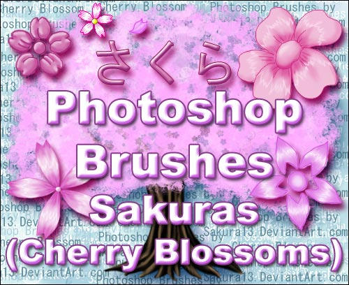 PS Brushes - Sakuras Updated by sakura13