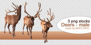 PNG STOCK SET: Deer by MAKY-OREL
