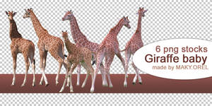 PNG STOCK SET: Giraffe - baby
