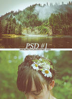 Coloring PSD-1