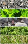 Textures: Nature v.2
