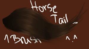1 Tail Brush