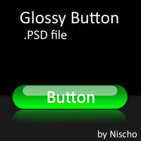 Glossy Button .PSD File by Nischo