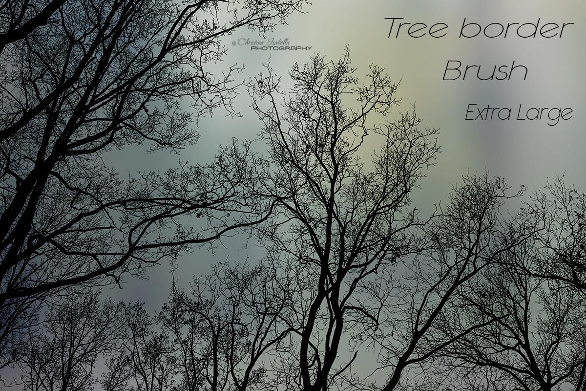 Tree border by ChristinaIsabella