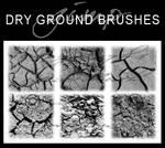 6 Dry Ground Texture Brushes