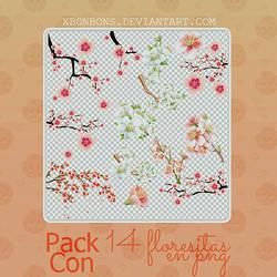 Pack 2~ Floresitas en PNG by xMissOMG