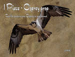 Cutout PNG - Osprey 011