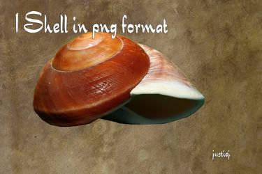 Cutout PNG - Shell 002