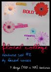 Texture Set 2- Floral Collage