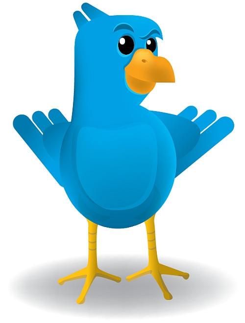 Smug Twitter Bird by araenae