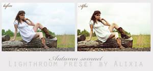 Autumn somnet free lightroom preset by alixia88
