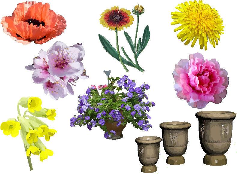 vectors flowers by MyMimi