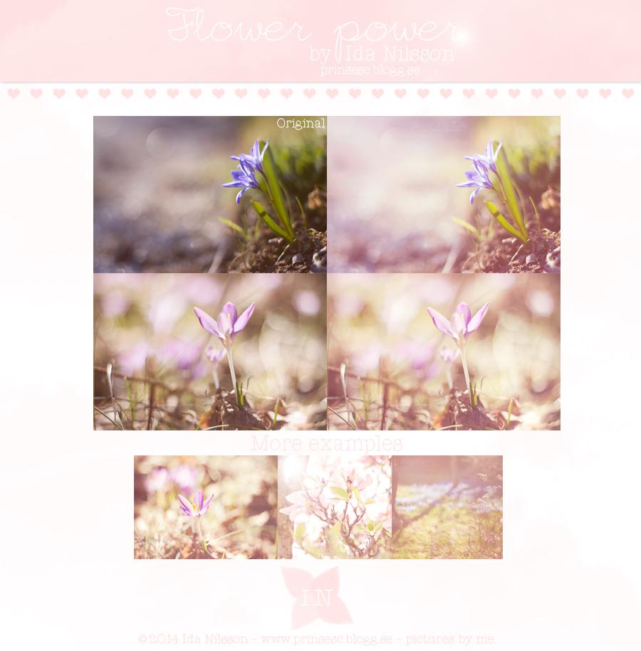 Flower Power by L0V3kalle