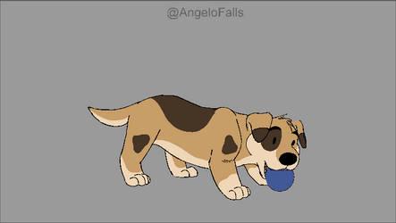Topo's puppy hop