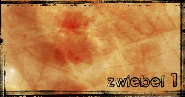 zwiebel 01 by sundel