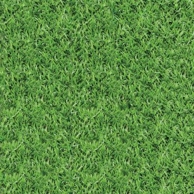 Grass Pattern (Tutorial Asset)